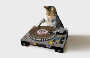 Cat-DJ-Scratch-Set-1