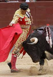 bullfighter pic