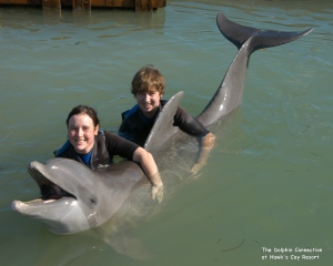 dolphin photos 07 002 (2)