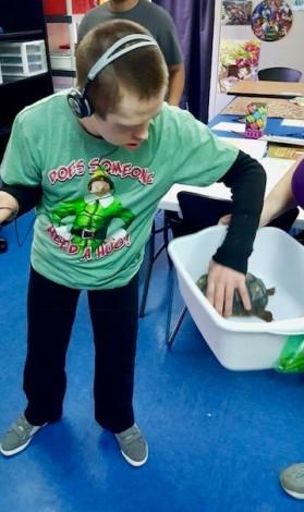 Nick AID turtle