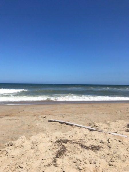 obx view 2018