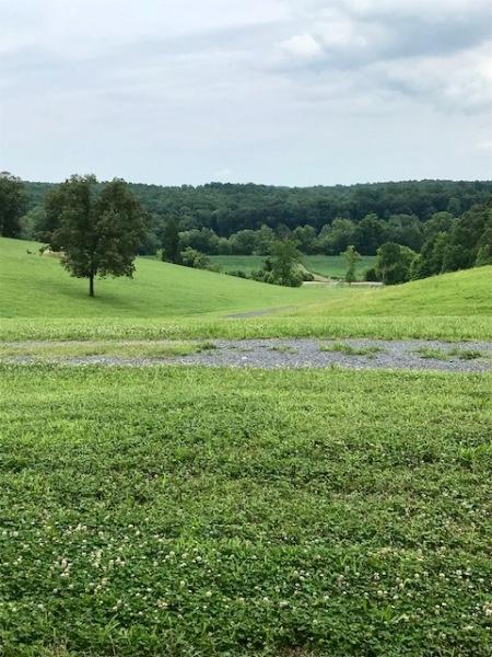 VA view