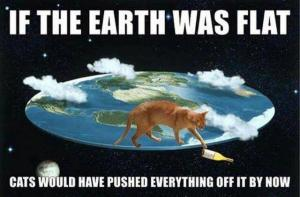 Cats Earth was flat