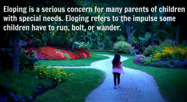 Eloping picture and definition