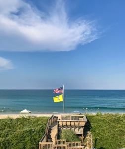 OBX flags 2019
