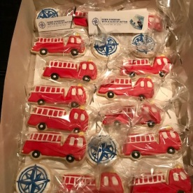 Book Launch cookies pic